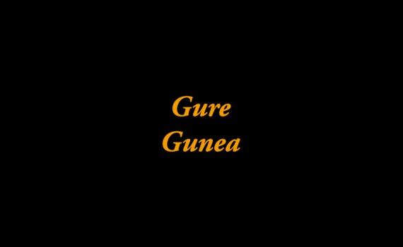 Gure-Gunea